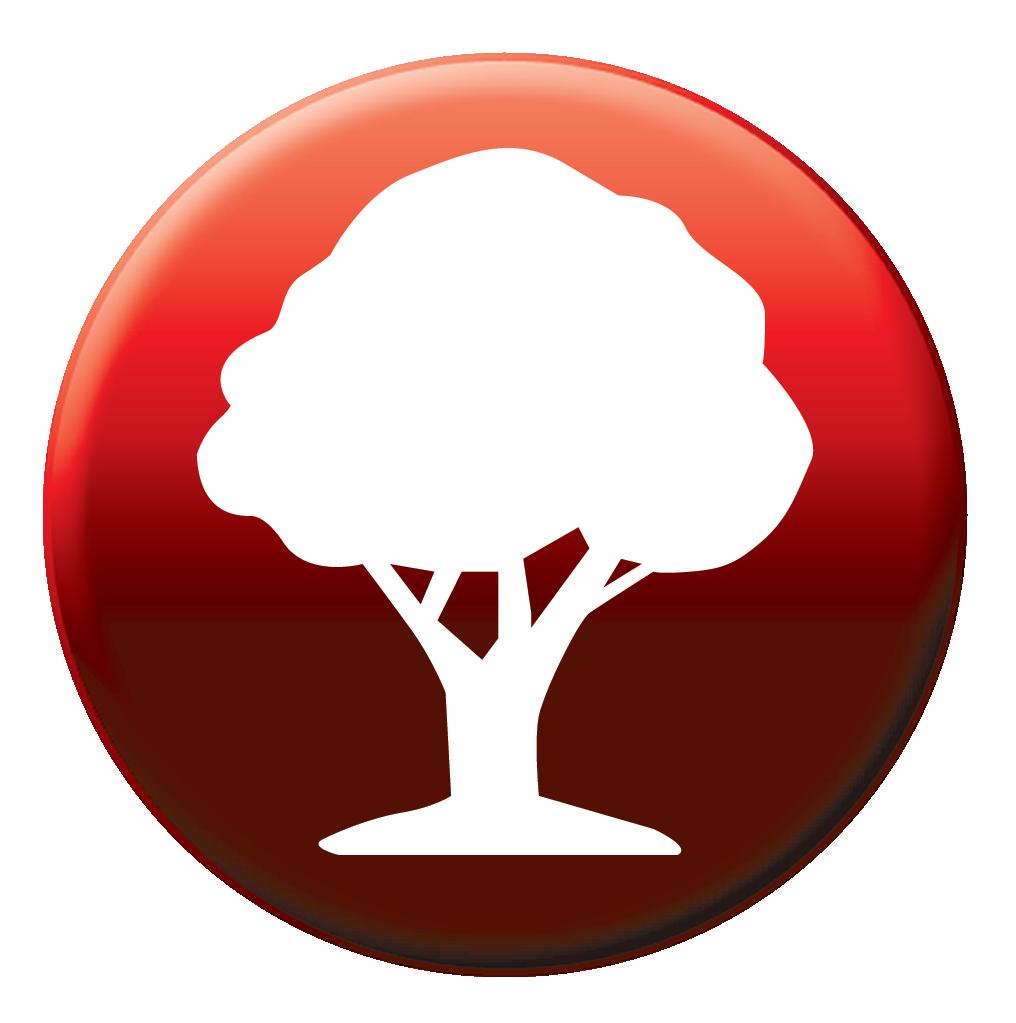 Tree Shrub and Plant Formulations