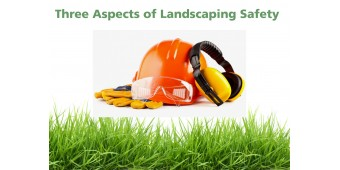 Safe than Sorry: 3 Aspects of Landscaping Safety
