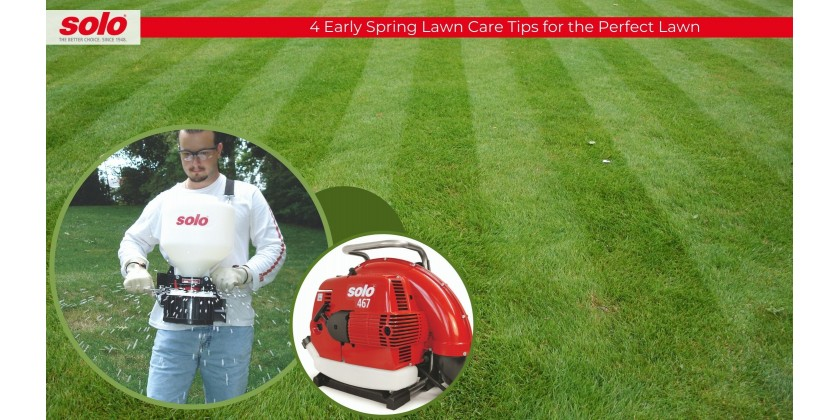 4 Early Spring Lawn Care Tips to Get the Perfect Lawn