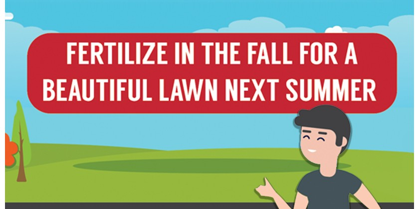 Fertilize in Fall for a Beautiful Lawn Next Summer | Infographic