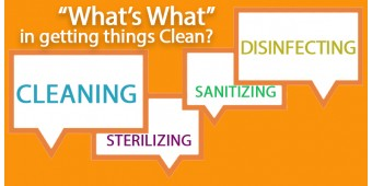 What's What in getting things CLEAN! | Infographic