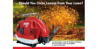 The 411 on Leaf Removal